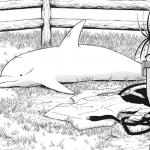 今週の「灼熱のニライカナイ」感想、オルフェウス警部補、地上でうっかりイルカに戻ってしまうw【5話】