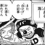 【悲報】ロジャー海賊団のメンバー、ガチで弱そうw