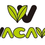 SACRA MUSIC、グローバルアニソンカバープロジェクト「WACAVA Project」始動 第1弾は「SAO」楽曲 |