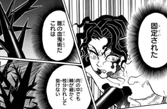 鬼 滅 の 刃 禰 豆子 血気 術