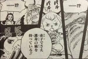 【ワンピース】通常ゾオン系悪魔の実を食べた能力者ってハズレじゃない?