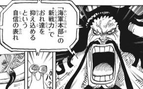 【ワンピース】カイドウのいう海軍の新戦力が四皇の遺伝子を使ったクローン説の可能性ない?