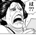 【ONEPIECE -ワンピース】ワンピースの仲間ってロビンまででよかったよな?????