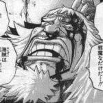 【ONEPIECE -ワンピース】ロックス海賊団、層が厚すぎる模様w