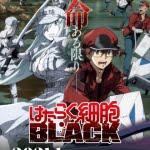 『はたらく細胞BLACK』アニメ化! 2021年1月TV放送決定   – !